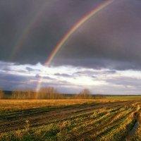 Радуга над дорогой :: Валерий Талашов