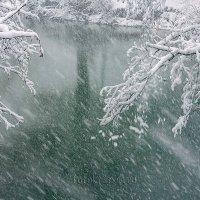 Весенний снег... :: Елена Васильева