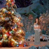 Новый год :: Оксана Чикулаева