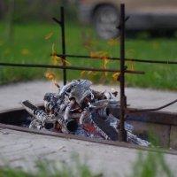 А вот и жарок подоспел.... :: Aleksandr Kondratenko