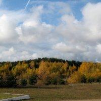 Золотая осень :: Irina