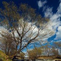 Вечный поток... :: Roman Lunin