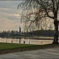 Любимое место прогулок :: Евгений Никифоров