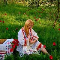 тёплая весна :: Olga Zhukova