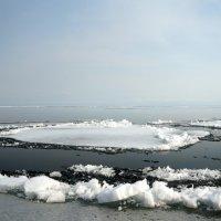Ледоход на Байкале. :: Наталья Тимофеева