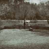 Одинокое молчание :: Алексей Соминский
