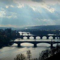 Мосты над Влтавой :: Дмитрий Журлов