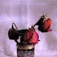 засохшие розы :: Ольга Иргит