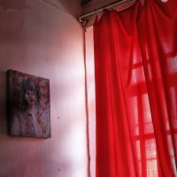 красная штора :: meltzer