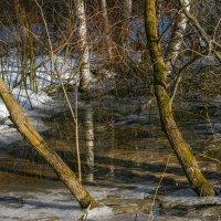 Весенний ручей :: Vadim Piottukh