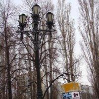 фонарь... на площади перед дворцом спорта... :: Наталья Меркулова