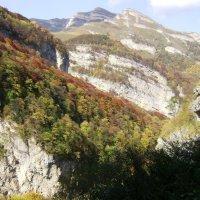 Кавказ.Осень... :: Маргарита Сазонкина