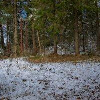 Замерзший апрель :: Игорь Хохлов