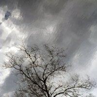 буря :: Сергей