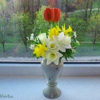 весна :: Evgenij Schleinikov