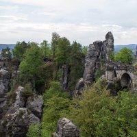 Саксонская Швейцария, национальный парк. :: Надежда