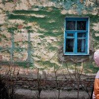 окно :: Alex Zadera