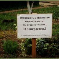 Крик души директора  парка :: Ольга Кривых