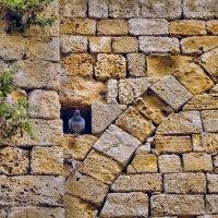 Жизнь древних стен :: Boris Khershberg