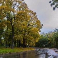 Городская осень :: Павел Данилевский