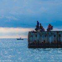 Морская рыбалка :: BoriSav Sav