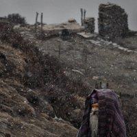 Денис Черкашин - Мира и горя мимо Садхупаломник идет сквозь метель к священному озеру