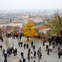 Прага :: Александра Губина