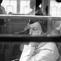В окне :: Александр Козачек