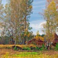 Домик в деревне... :: Александр Данильчев