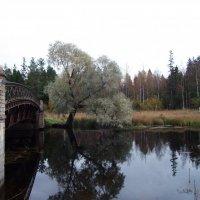 Мост через реку Тёплая. :: Kiril Stupin