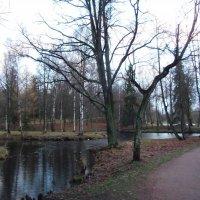 Водный лабиринт г Гатчина дворцовый парк. :: Kiril Stupin