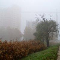 Набережная туманов 5 :: Александр Бодягин
