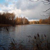 Чесменский обелиск, вид от Серебряного озера. :: Kiril Stupin