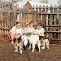 ребятки и козлятки :: Леонид Виноградов