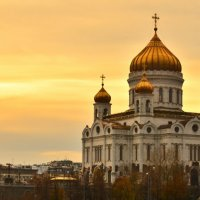 В золоте... :: Александр Nik'Leme