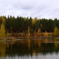 Осень на озере. :: Елизавета Успенская