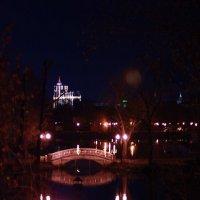 Мой сладкий ноябрь :: Настасья Матвеева