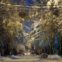 Вечерняя прогулка :: Wiktor Kowalow
