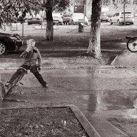После дождя :: Сергей Коновавлов