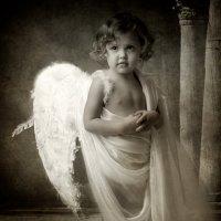ангел :: юрий шинкаревский