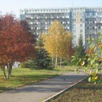 осень в городе :: Катерина Коханова
