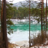 река Катунь :: Катерина Коханова