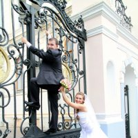 Жених не хочет женится. :: Елена Белянина