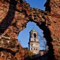 Часовая Башня :: Алексей Морозов