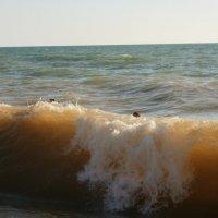 И такие волны были...) :: Анастасия Сергиенко