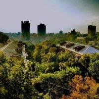 Крыша :: Андрей Труфанов