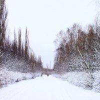 cold :: Роман Met_t