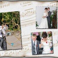 страничка для свадебной фотокниги :: Сергей Кандауров