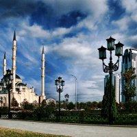 Современный город Грозный :: Виталий Спиридонов