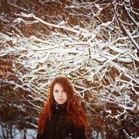 Автопортрет :: Алёна Север